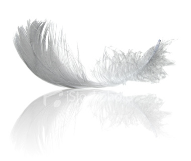 Aduro FeatherSorb™ Materials